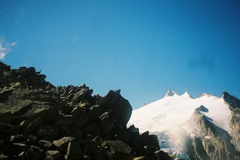 Glacier with ibex